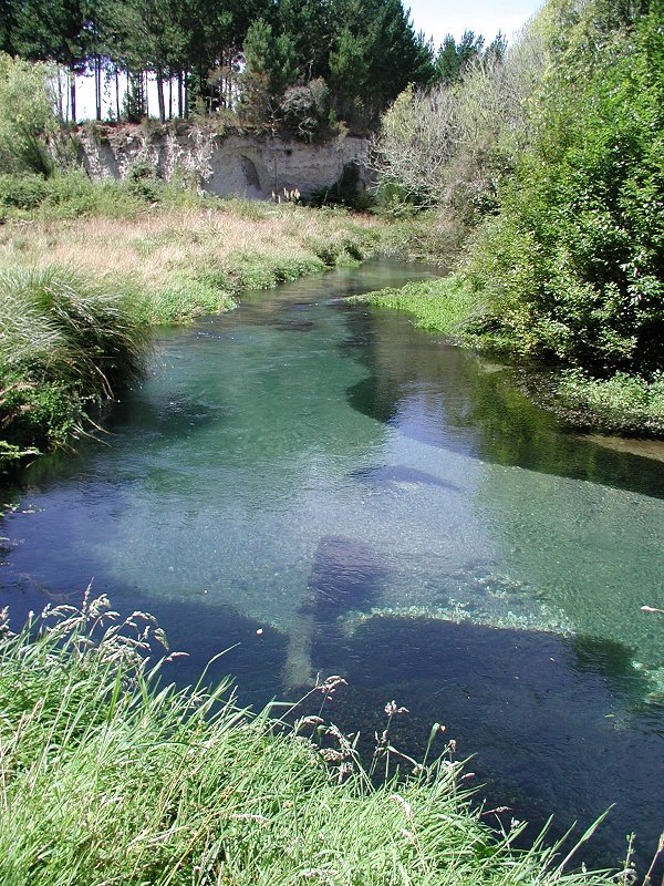 An example of a clean river in the middle of rime diary country prior to the dairy boom.